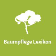 (c) Baumpflege-lexikon.de